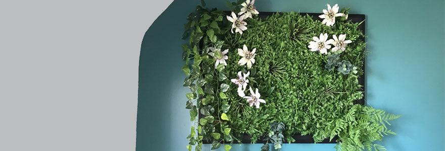 Opter pour les cadres végétaux stabilisés